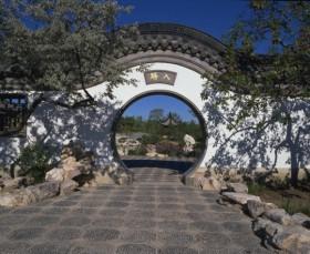 Meditation EnergyEnhancement Tao Door